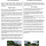 Download 'Green Oasis Garden' leaflet