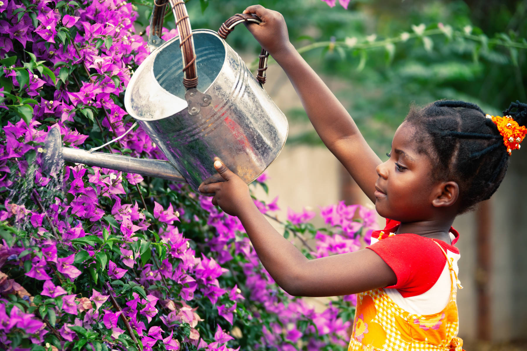child pouring the water onto plants