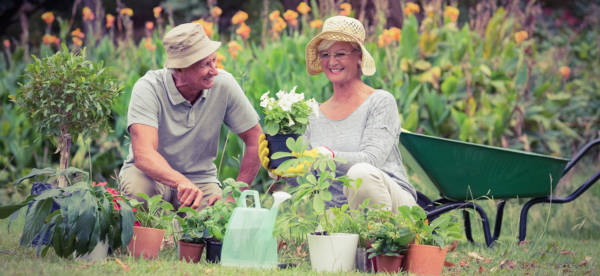 Couple gardening outside