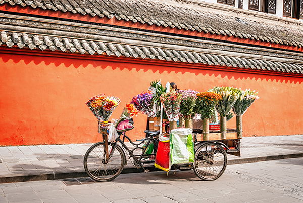 Chinese bike with flowers cargo