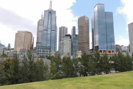 A green park and trees in front of skyscrapers - Champions of Green Cities