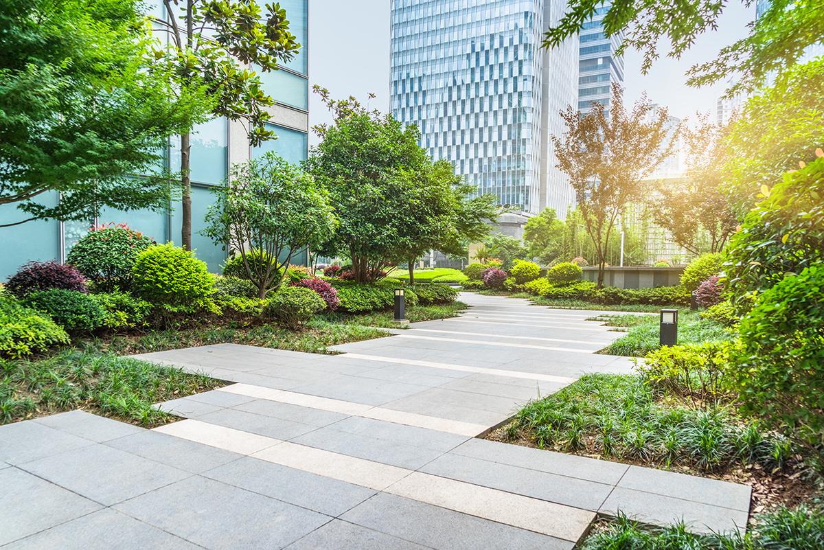 Park in Shanghai